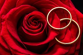 wedding-rings-2284153__180